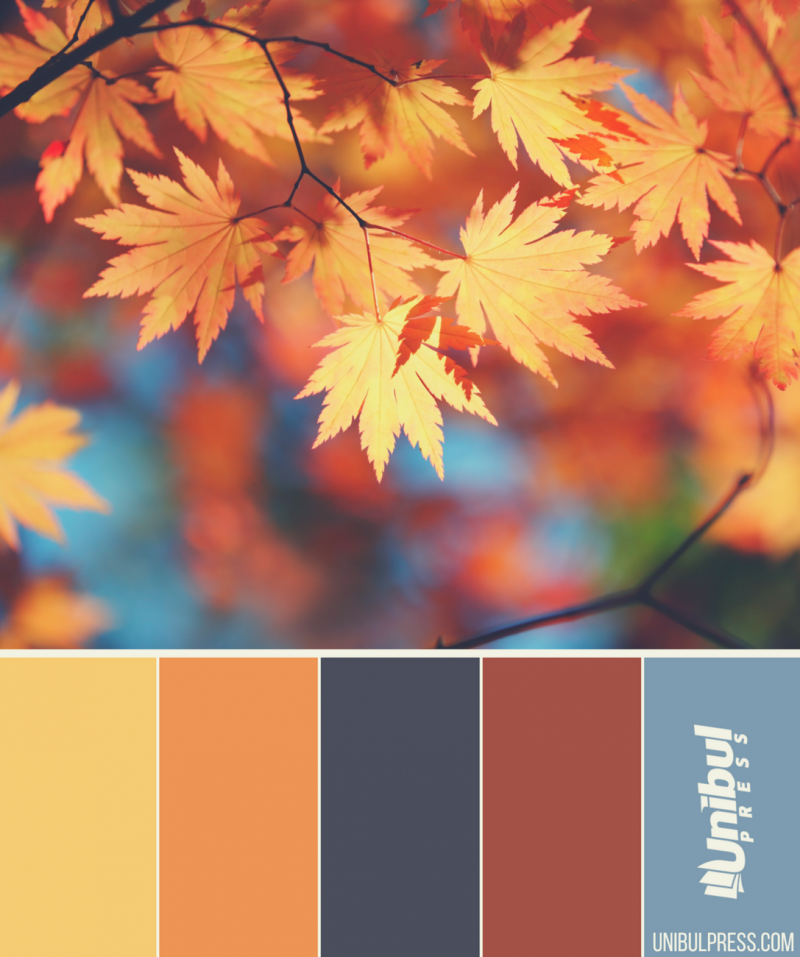 autumn coloring palettes - brown leaves