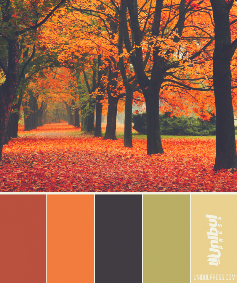 autumn coloring palettes - forest in autumn