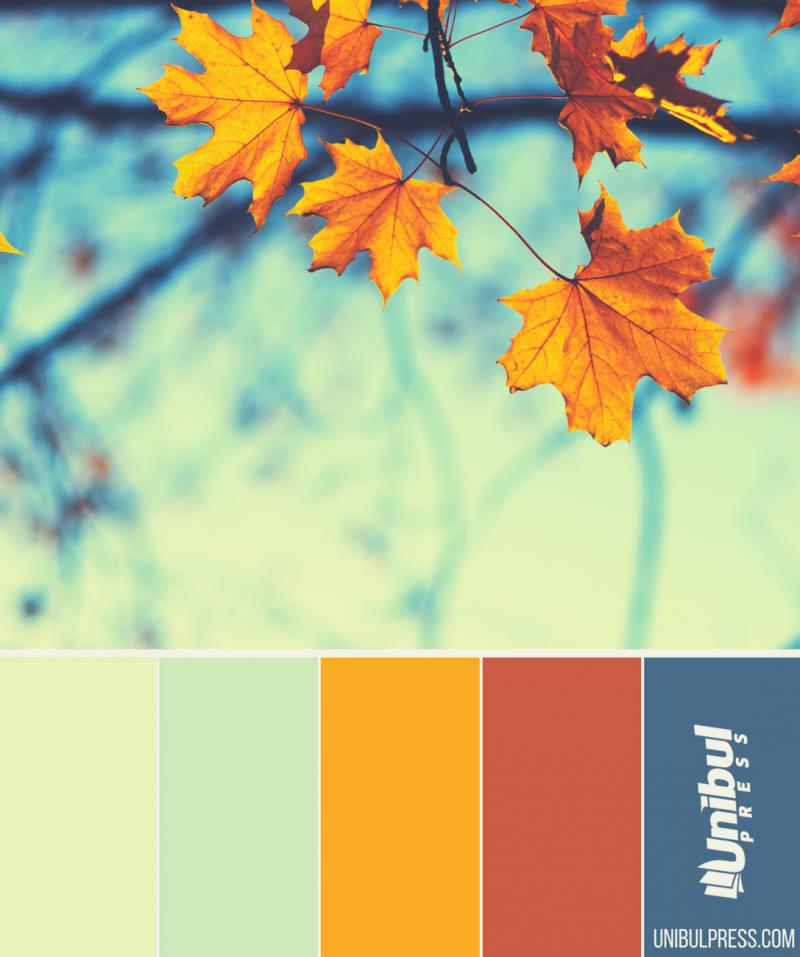 autumn coloring palettes - last leaves