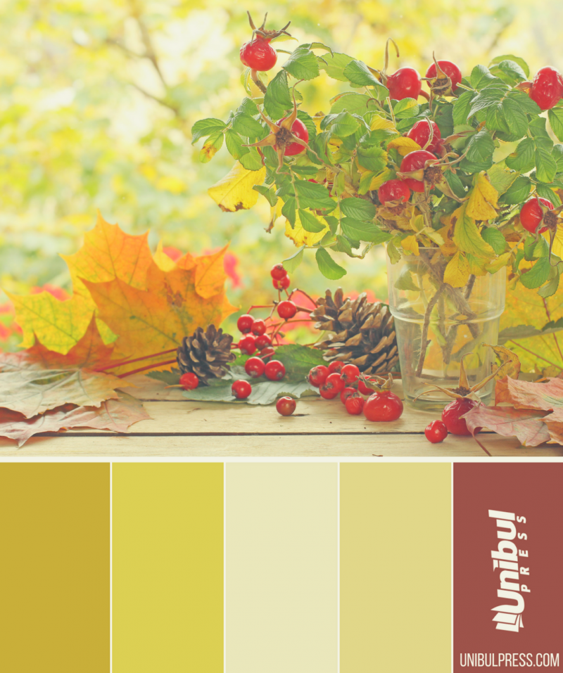 autumn coloring palettes - leaves and conrels