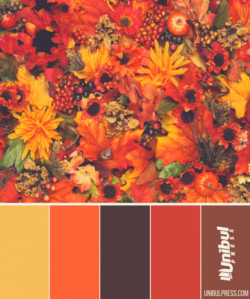autumn coloring palettes - leaves and nuts