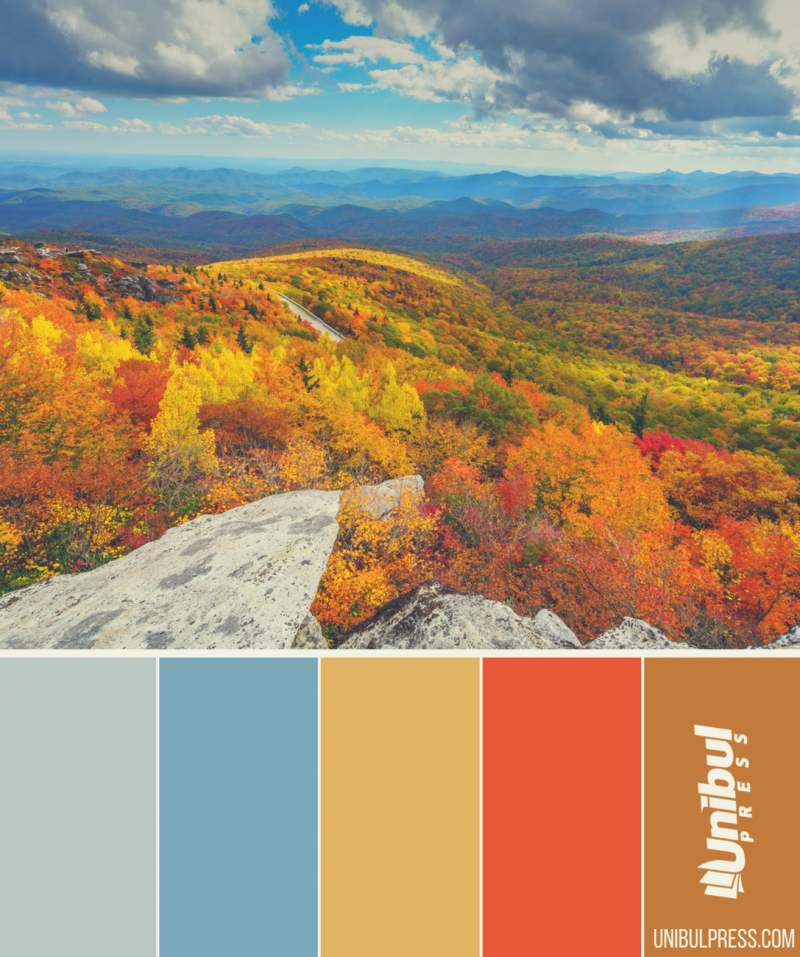 autumn coloring palettes - mountain sight in autumn