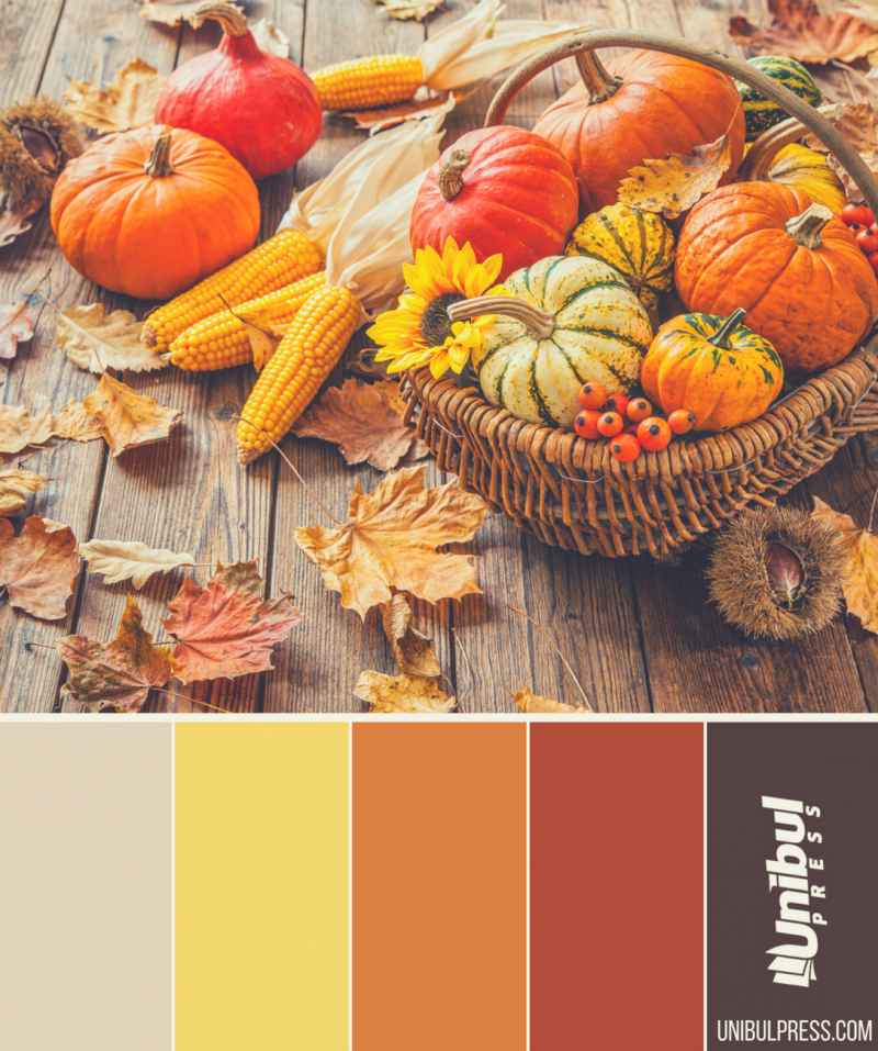 autumn coloring palettes - pumpkins in basket and leaves