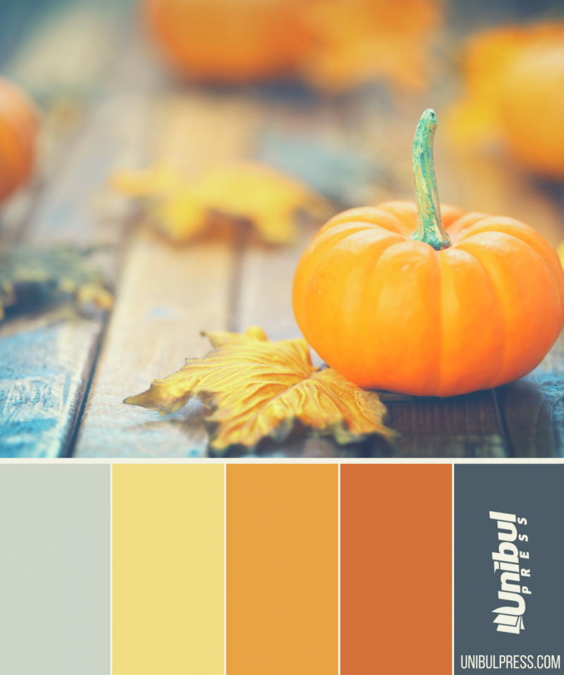 autumn coloring palettes - small pumpkin